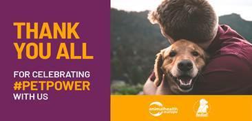 PetPower: de positieve rol van dieren in de samenleving