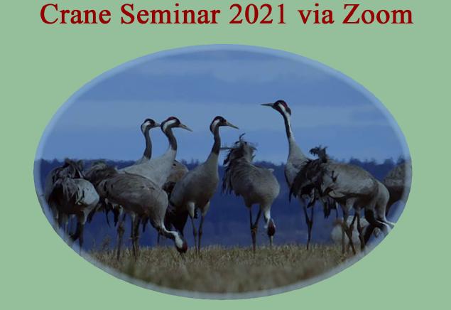 crane seminar